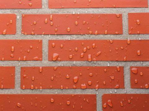 Дождь - одна из причин появления налета