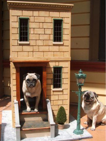 Двухэтажный кирпичный коттедж для питомцев