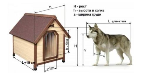 Определение размеров будки в зависимости от размеров собаки