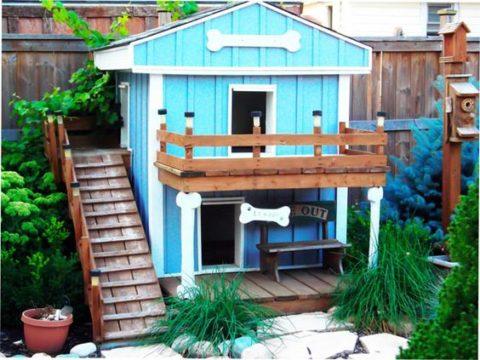 Прекрасный уголок сада с двухэтажным домиком для собак
