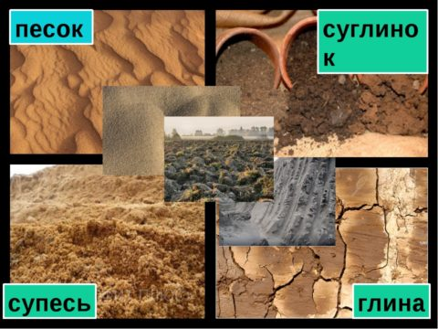 Вид глинистых пород и песка